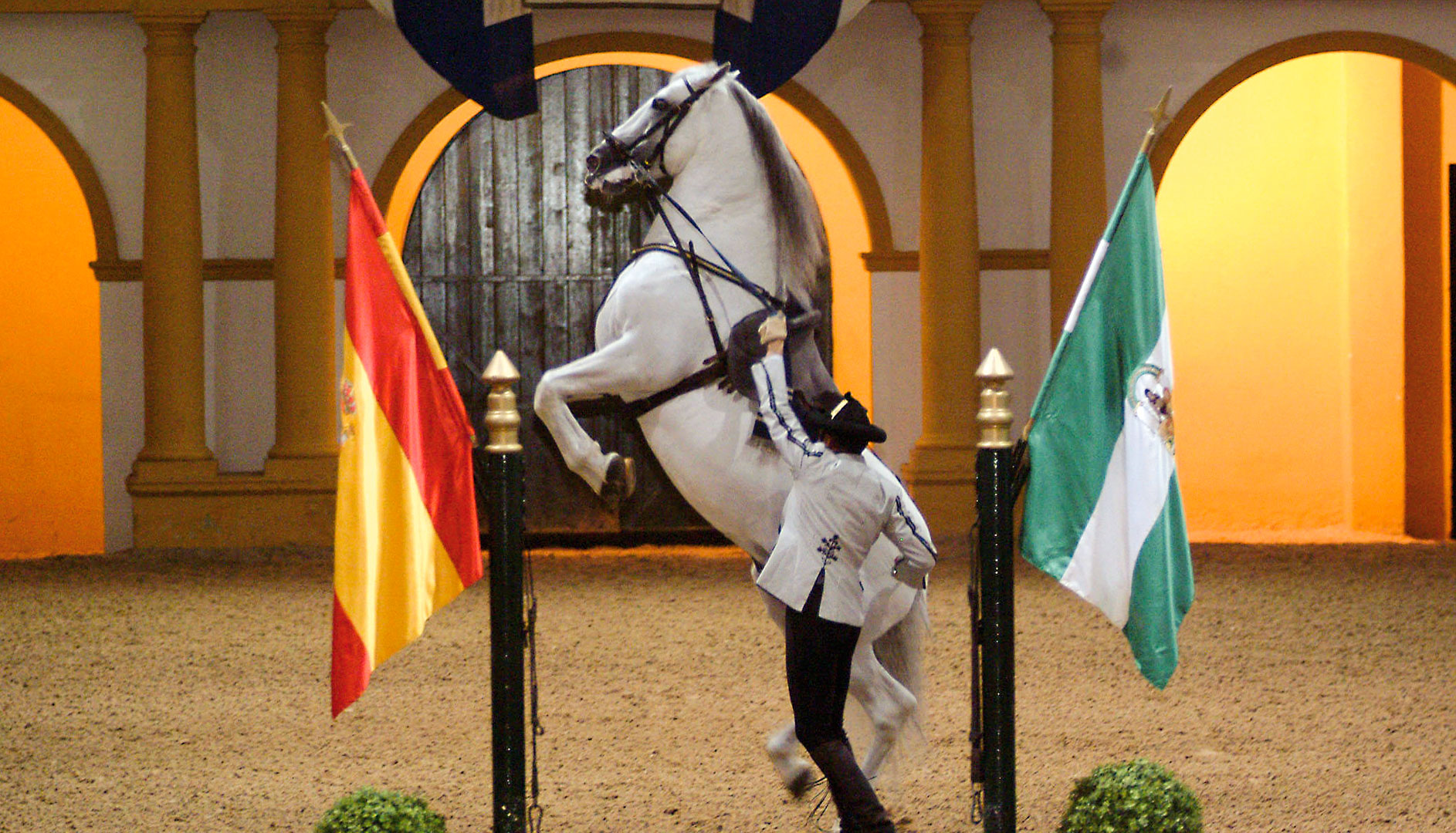 A Show by the Royal School of Equestrian Art of Jerez.